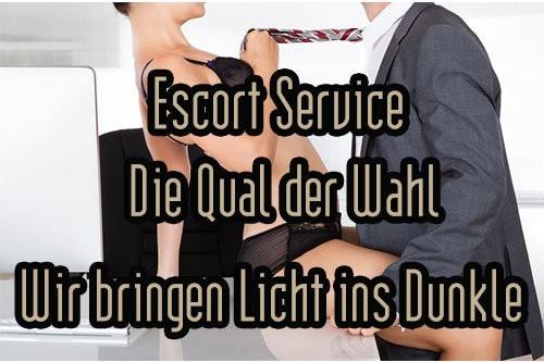 die-qual-der-wal
